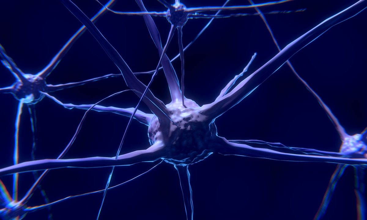 Do czego można wykorzystać optogenetykę?